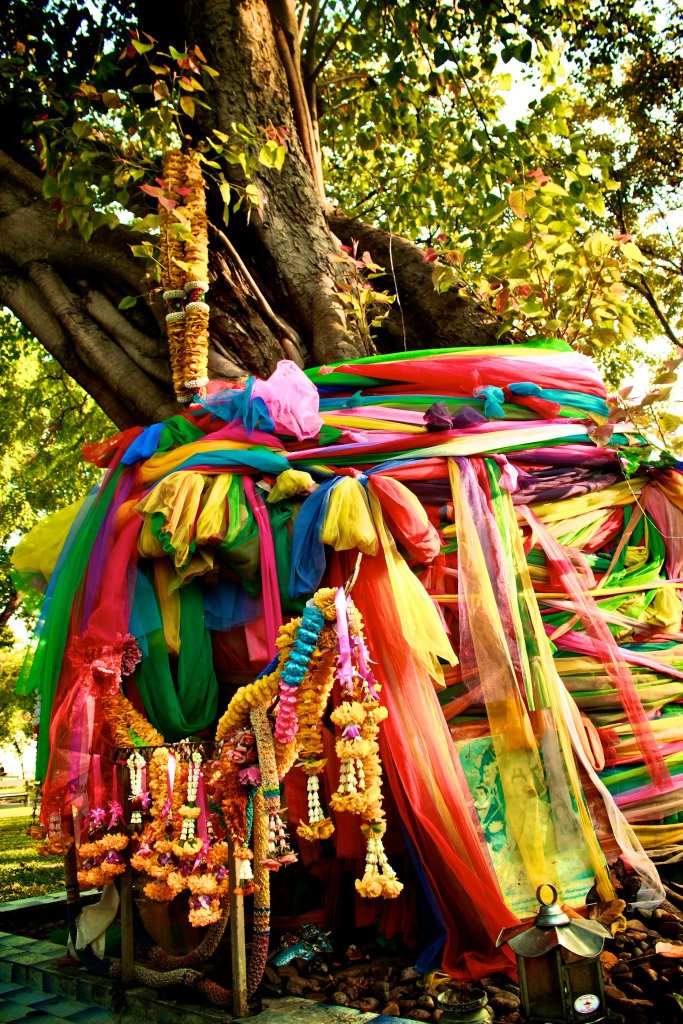 Travel Tree