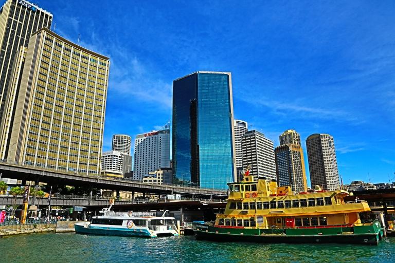 Sydney (89)