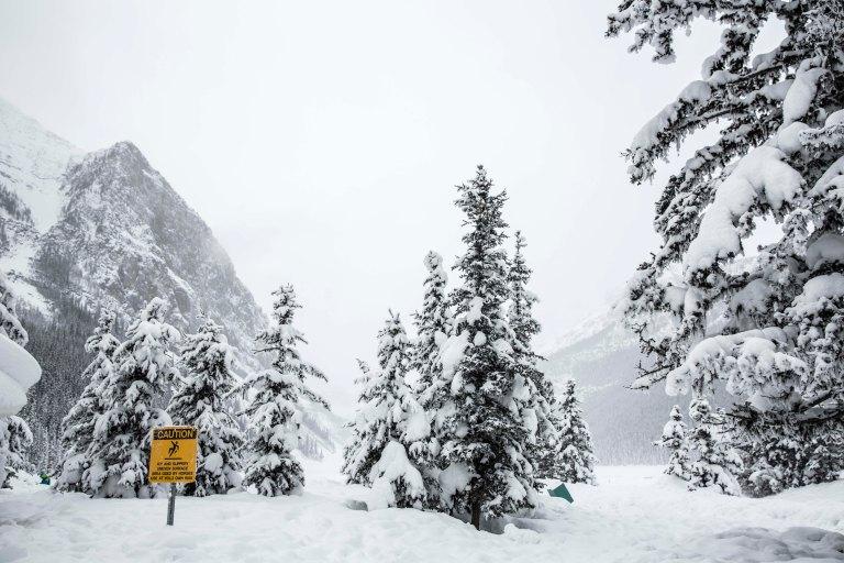 Winter_Canada_210