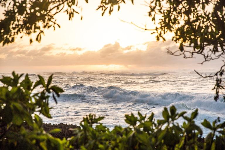Hawaii North Shore