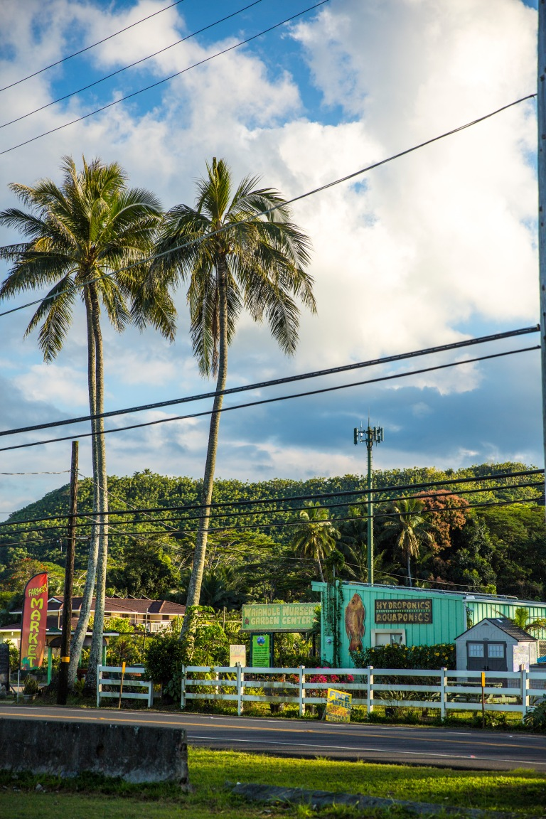 HAWAII 183